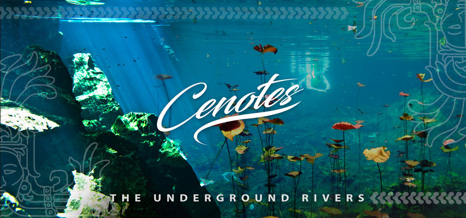 Cenotes: Private Tours to the Underground Rivers!