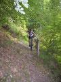 Singletrail im Bernkasteler Wald
