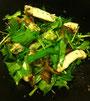 ポークと焼きナスの水菜サラダ