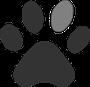 Hunde Leben, Hundebetreuung, Spezielle Halsbänder