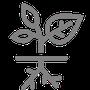 Icon Dachbegrünung