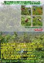 里山再生プロジェクトイベントチラシ