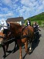 Kutschenfahrt 10. Mai 2013