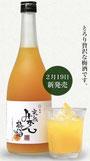 中野酒造 完熟みかん梅酒