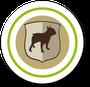 Hunde-Versicherung