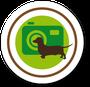 Tier-Fotografie