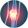 Également produite naturellement par l'organisme humain, la glucosamine fait aussi partie du tissu conjonctif prévient la dégradation des cartilages et favorise l'action du sulfate de chondroïtine.