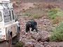 Maroc: les travaux forcés avant le bagne
