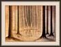 Lichtung im Wald IV, Originalgröße gerahmt ca 42x56cm