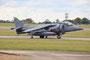 Hier nochmal der Navy Harrier mit kariertem Heck und Anker im Staffelwappen.