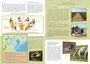 Dépliant A4 - Lettre d'info Natura 2000 - Syndicat Mixte du Delta de l'Aude - 2013