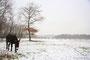Un âne en hiver - Chaudeney-sur-Moselle (54)