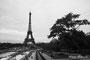 Tour Eiffel et Champs de Mars, Paris