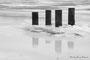 Poteaux pris dans la glace - Fontenoy-sur-Moselle (54)
