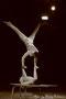 Le Duo Solys II - Cirque Pinder - Représentation de Nancy - 2011