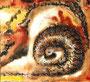 Fossile Fantasie, ca A3, Aquarell auf Papier