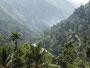 Ausblick vom Ella Alpine Resort
