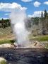 Regelmäßig - Der Riverside Geysir eruptiert