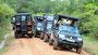 Jeepkolonnen treffen sich, wenn Tiere gesichtet werden