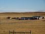 "Einsam - ""Farm"" in Montanas Prärie"