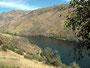 Aufgestaut - Snake River kurz vor dem Hells Canyon