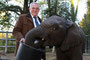 Verabschiedung von Dr. Ulrich Schürer, Zoodirektor vom Wuppertaler Zoo mit Elefant Uli