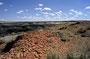23. Mai: Eine lange Dirt Road zur De-Na-Sin- und Bisti-Wilderness