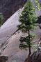 Zion NP: Anstieg zum Hidden Canyon