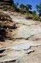 Elephant Hill, Canyonlands, UT '91 - hier gehts nur Rückwärts hoch, da man sonst nicht um die nächste Serpentine herumkommt!