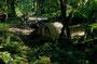Iron Creek CG - einer der schönsten Campgrounds (von 150 Plätzen waren nur 2 belegt! - 2 Jahre später: Alles voll!)