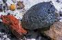 Manganknollen und sonstige farbenprächtige angeschwemmte Steine