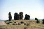 15.Mai: Über den Coronado Trail kommen wir nach New Mexico und finden südl. von Silver City die 'City of the Rocks'. Die liegt in einer riesigen Senke, vermutlich ein ehemaliges Korallenriff