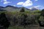 Nach tagelangem roten Gestein und immer ca 35°  musste mal was kühles Grünes her: Hoch in die La Sal Mountains