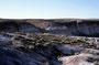 Petrified Forest NP: Ein Höhepunkt - die 'Blue Mesa'