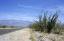 Endlich Wüste: Anza Borrego Desert State Park