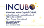 Carte électronique Incubo