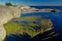 Stangnes, Telemark