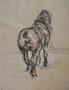 Cheval de labour (encre de Chine, huile, 30 x 24 cm, coll. part. MC)