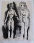 2 nus, env. 1948 (dessin, 25 x 32.5 cm, coll. part. MR.)