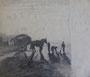 Récolte de goémont,  env. 1949 (fusain, 40 x 30 cm, verso de Marée basse, coll. part. PLS)