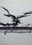 Etude pour affiche concert Jean-Yves Le Bellec, env 1985 (encre, 30 x 21 cm, coll. part. MR)