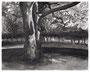 23,9 x 29,9 cm, Tusche auf Papier, 2002