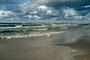 Mini-Aussie auf einem Maxi-Strand