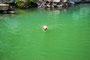 27.05.2012 - Baden in einem Steinbruch-See