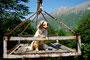 19.05.2012 - In einem Berg-Seilbahn-Korb in Slowenien