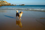Atlantik Strand im Süden Portugals