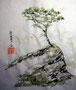 sumi-e, chinesische Tusche