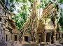 Angkor, 30 x 40 cm