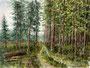 Wald in Kärnten, 23 x 30 cm