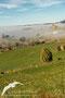 Sabayés cubierto por la niebla